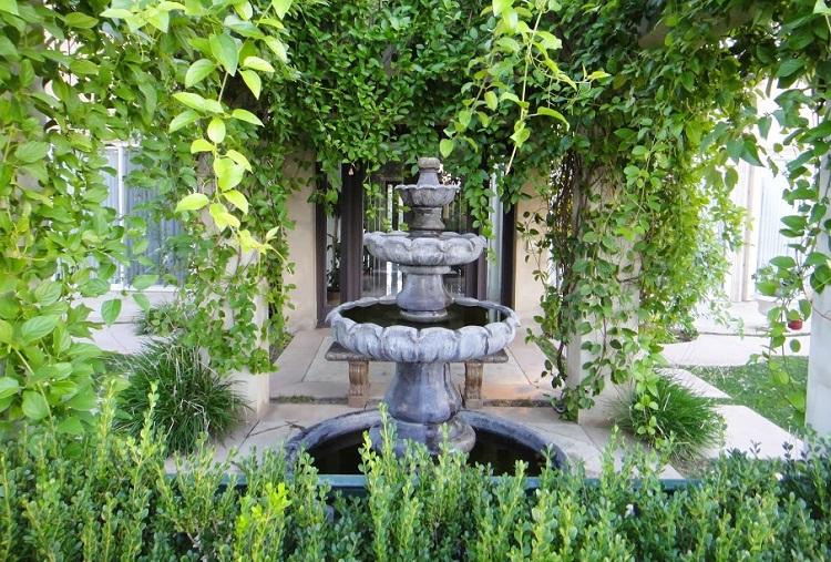 plantas y fuente para atraer la buena energía en el hogar