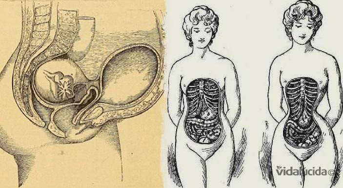 cuerpo de la mujer