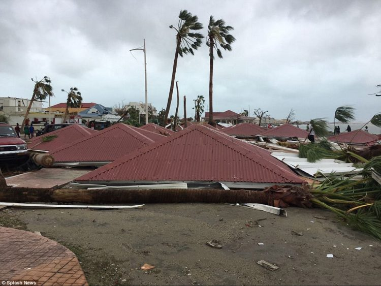 construcciones al 99% destruidas en la isla de san martín por el huracán irma