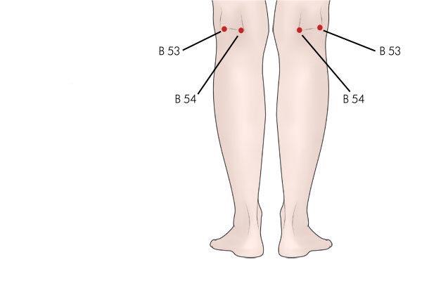 acupresión punto b54