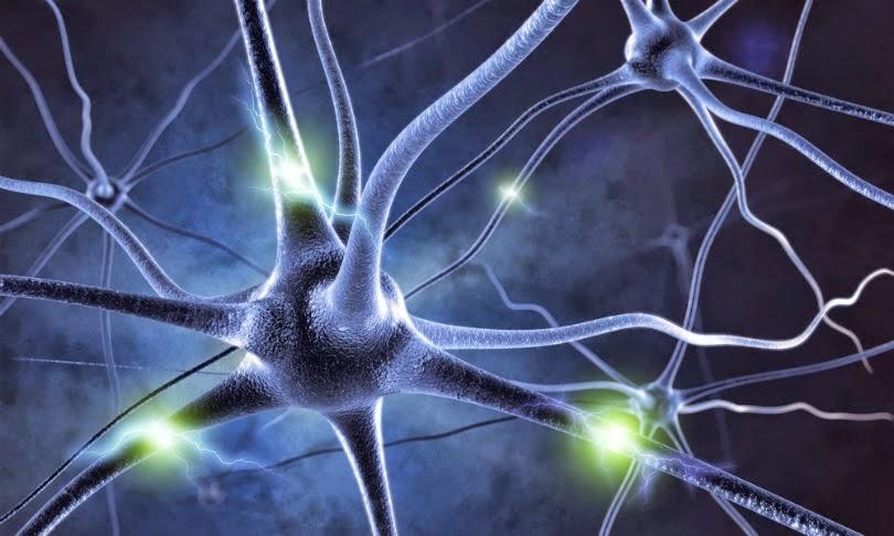 neuronas en el cerebro deterioradas demencia
