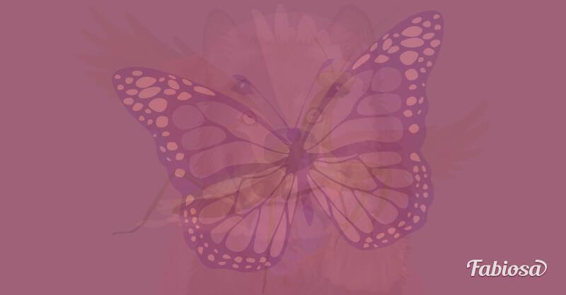 test de los animales mariposa
