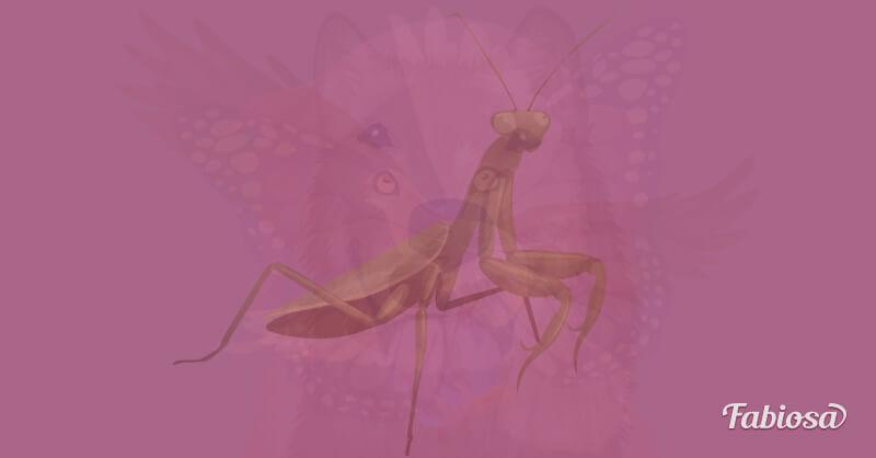 test de los animales mantis religiosa
