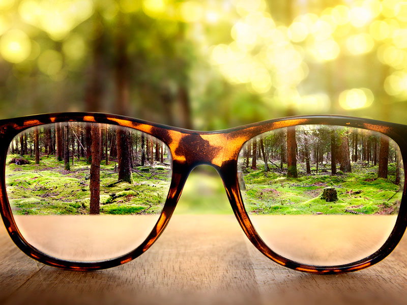 viendo la vida con otros lentes