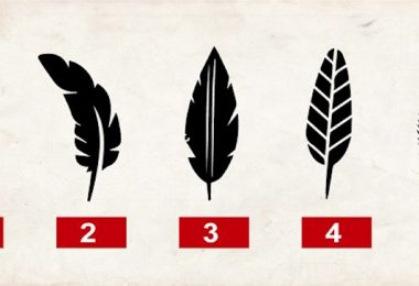 Descubre lo que la elección de una pluma revela sobre ti