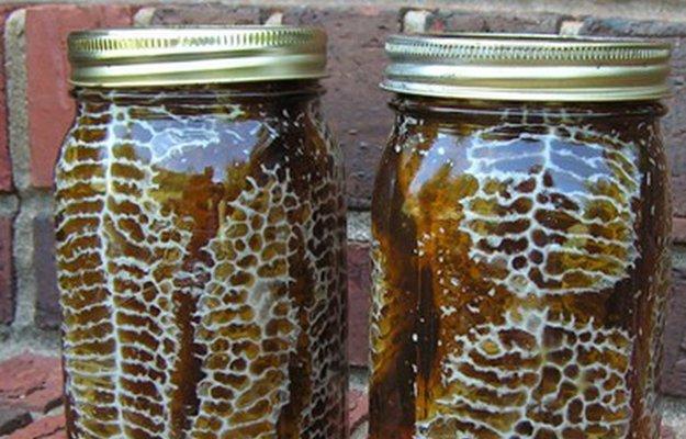colmena y panal de abejas