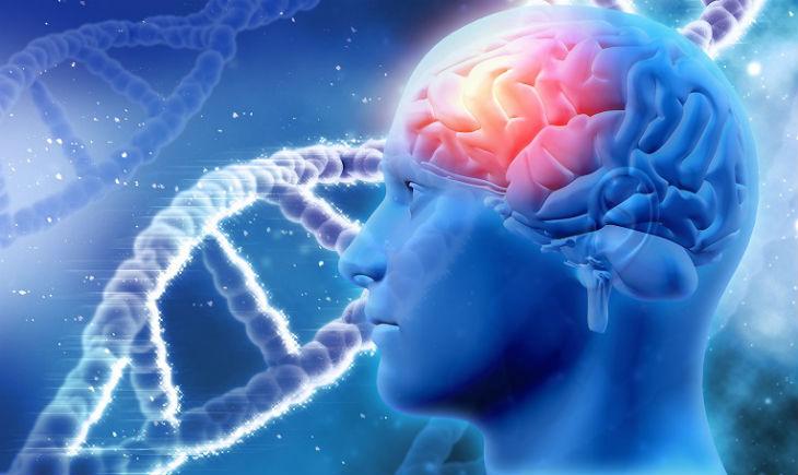 gen del alzheimer