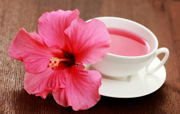 poderes curativos del hibisco