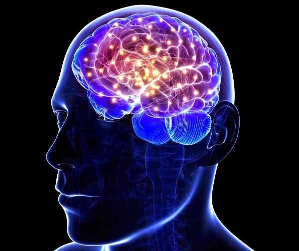 regeneración de células cerebrales