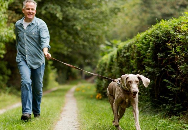 caminando con su mascota por un parque