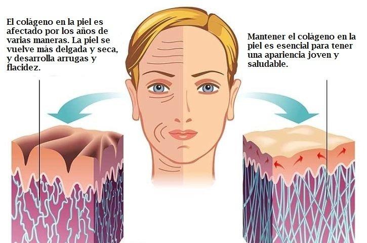 suplementos para la piel