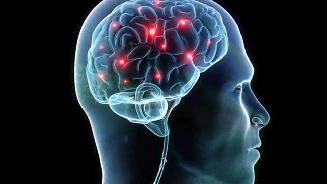 La psicología forense y el estudio del comportamiento criminal