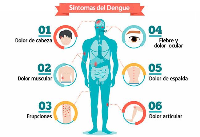 Conociendo los síntomas del dengue