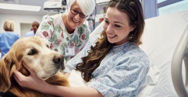 Los beneficios de la terapia con perros