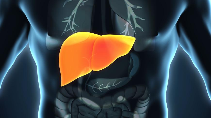 Qué dieta es recomendable si tengo hígado graso
