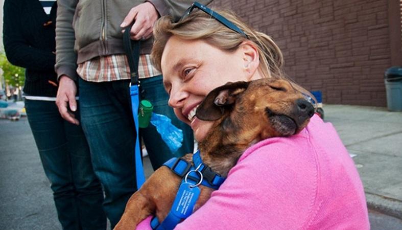 adoptar una mascota de un refugio