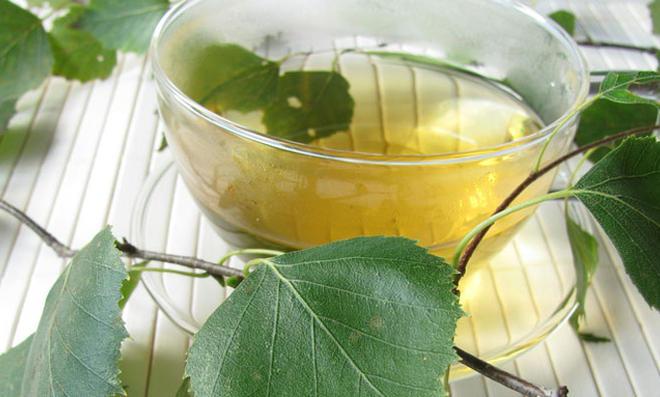 Conoce los beneficios de las hojas de abedul para los problemas urinarios