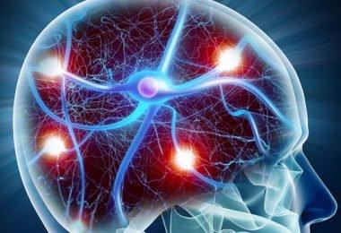 Cómo se puede actuar en caso de convulsiones por epilepsia