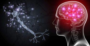 Conoce los mejores ejercicios para entrenar el cerebro para pensar creativamente