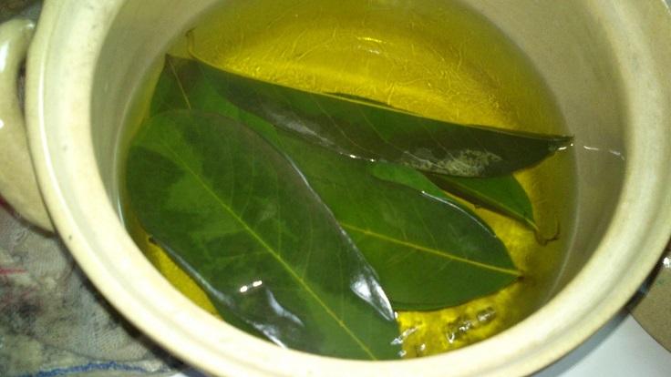 hojas de guanábana y sus beneficios
