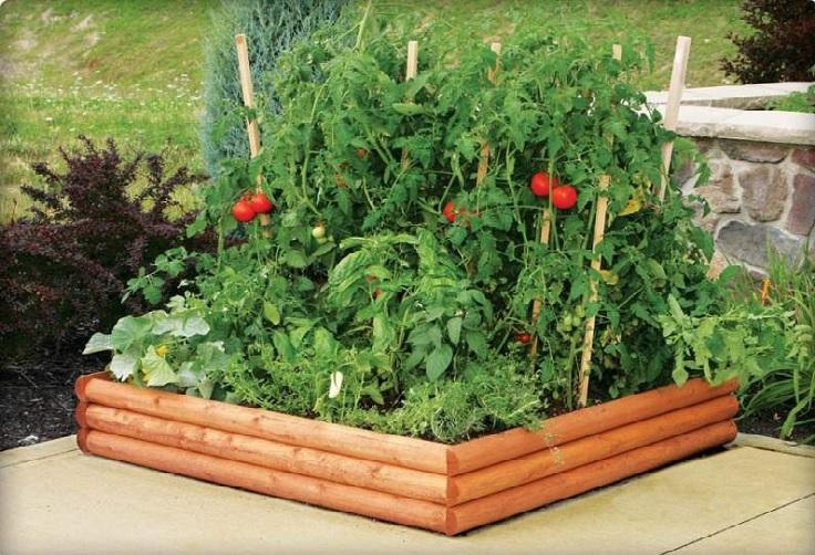 jardines hermosos de hortalizas