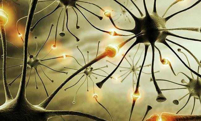 misterios de la mente humana