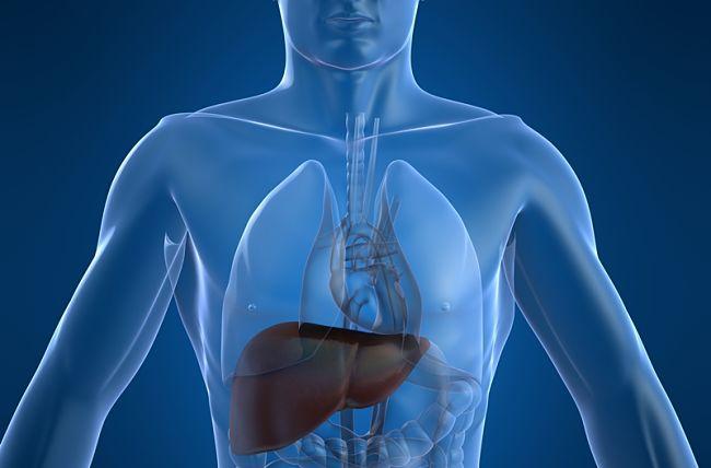 Síntomas de cirrosis y posibles complicaciones