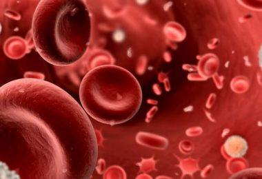 Conoce cuáles son las causas de la anemia, síntomas y tratamientos recomendados