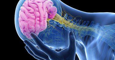 Mejorar la calidad de vida para prevenir un derrame cerebral