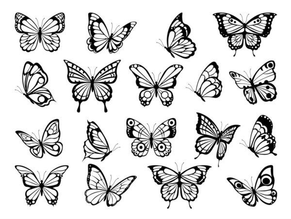 Diferentes imágenes de mariposas para tatuarse
