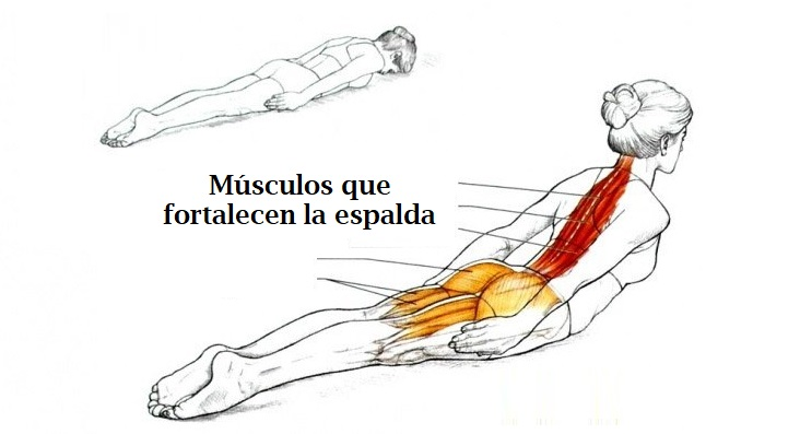 ejercicios para tratar el dolor de espalda