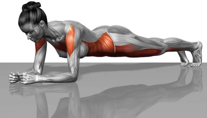 plank ejercicios para mejorar la postura