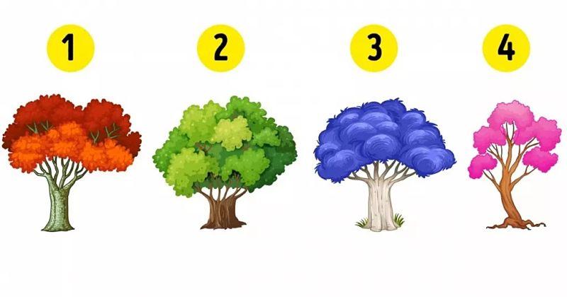 Dime qué árbol eliges y te diré qué emoción domina tu vida