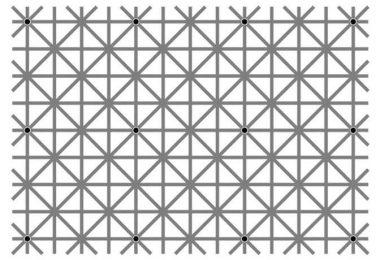 Cuantos puntos negros ves test