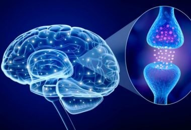 Causas de la deficiencia de dopamina