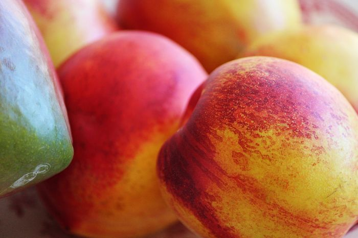 Mangos africanos