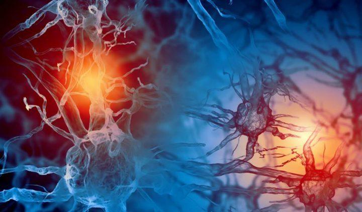 hábitos que matan neuronas