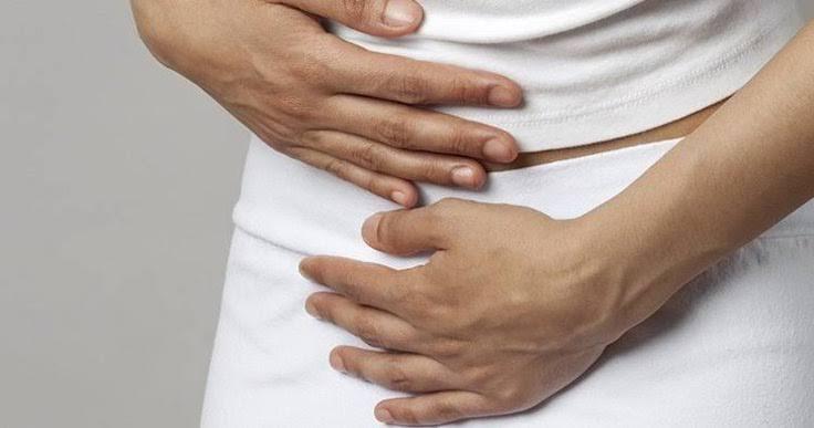 estrés y bacterias en el intestino