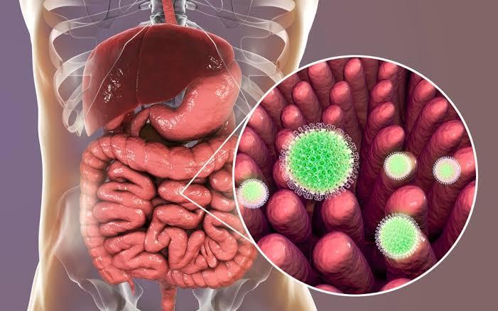 Dieta para la candida en intestino permeable
