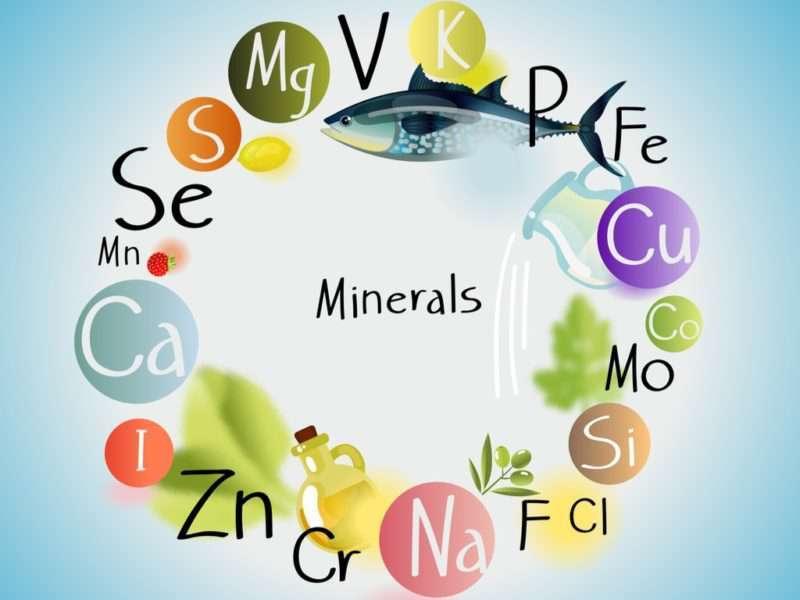 minerales traza