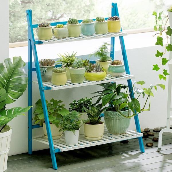decorar una habitación con plantas