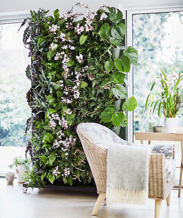 decorar una habitación con muro de plantas