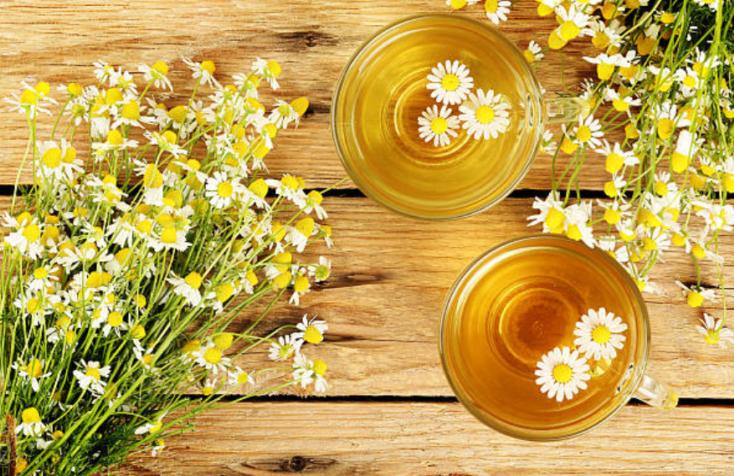 flores con beneficios medicinales