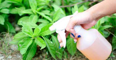 Aprende a fabricar tu propio herbicida natural