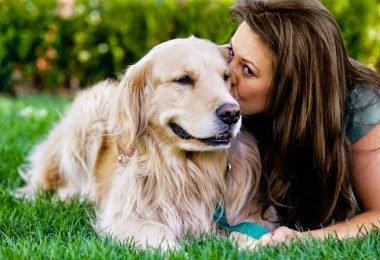 La psicología explica cómo lidiar con el dolor de perder una mascota