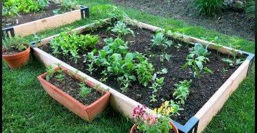 Aprende c´ómo usar el compost una vez terminado