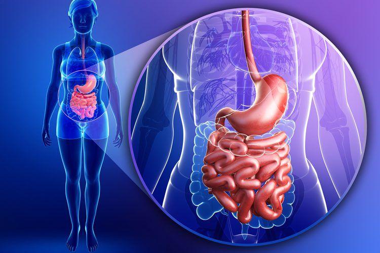 inflamación intestinal