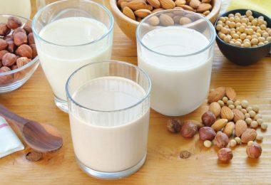 Cuáles son las mejores opciones de leches vegetales para la diabetes