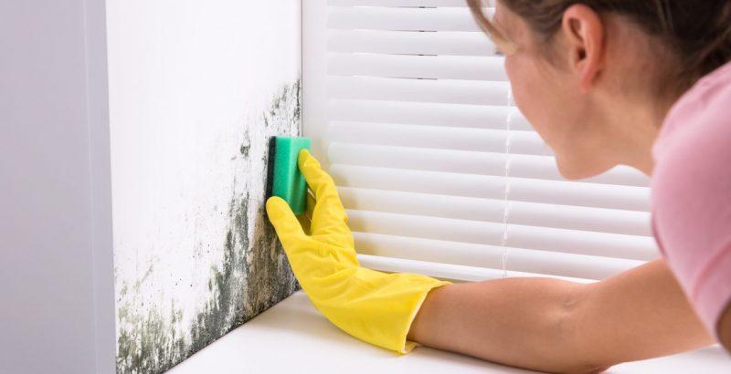Mujer limpiando las manchas de humedad en la pared