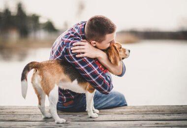 Hombre con mascota apoyo emocional